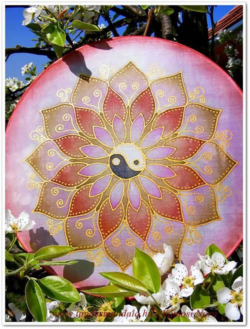 rozsa-barnajinjang500-2
